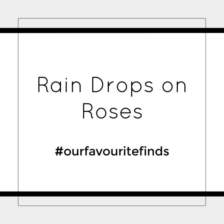 Rain Drops onRoses